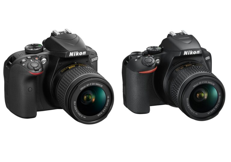 Nikon D3400 vs D3500 – Which One Is Better 2021