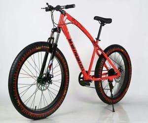 Mankani Fat Tyre Bicycle